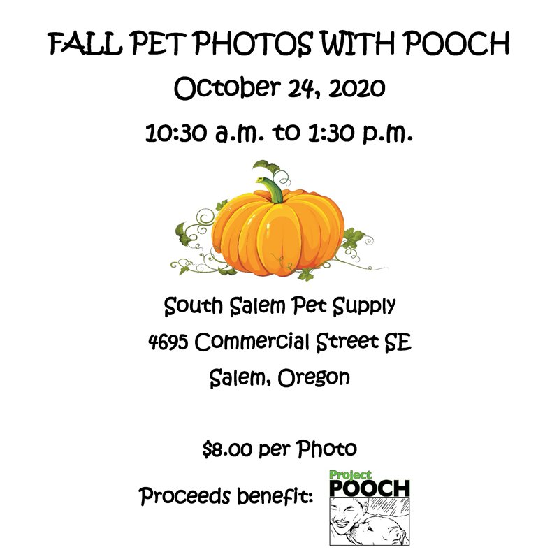Fall Pet Photos with POOCH - 10/24/20, at South Salem Pet Supply